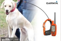 Das neue Garmin Hundeortungssystem Alpha 50